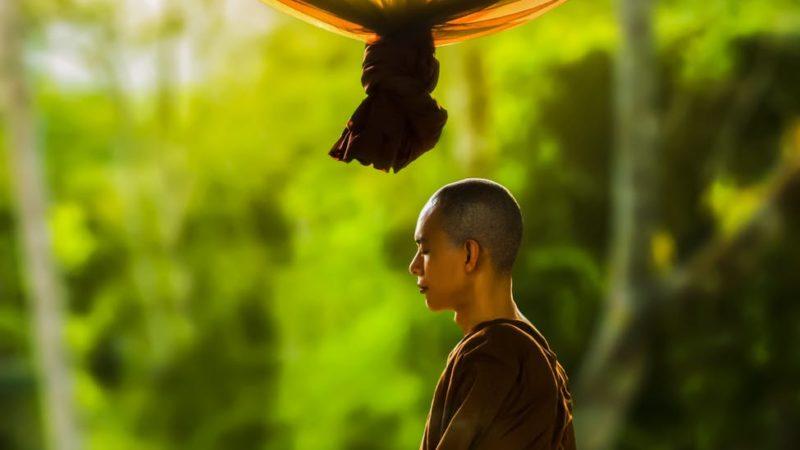 yogi life vishaya kagga