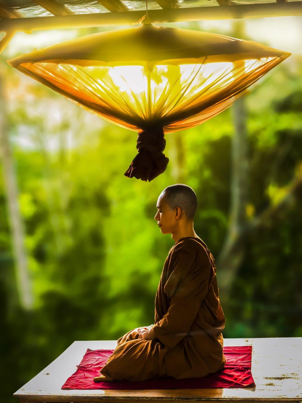 ಮಂಕುತಿಮ್ಮನ ಕಗ್ಗ –  ಜೀವನಯೋಗ  – Life as yoga