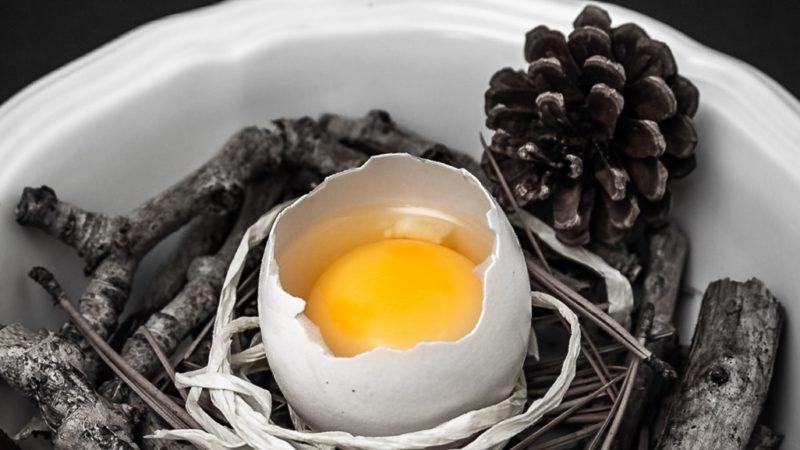 Egg Zen story