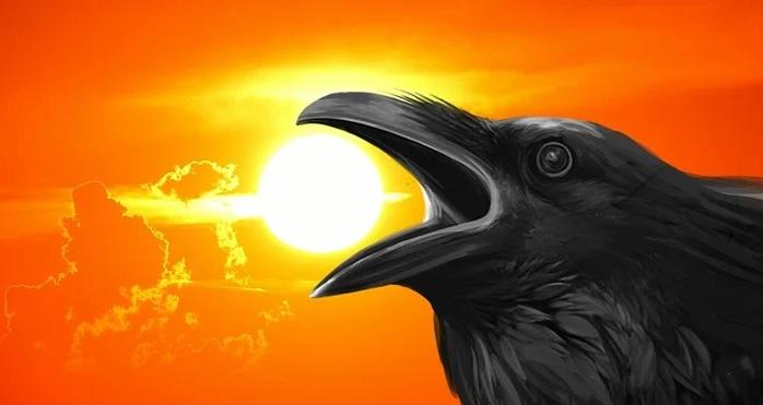 kannada crow story kanchi sree